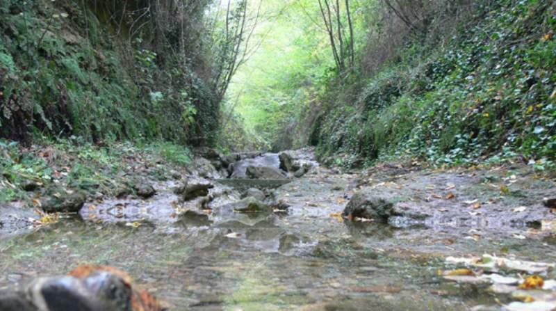 riserva naturale rio torsero